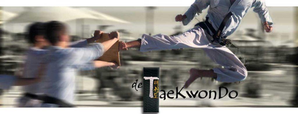 de taekwondo online, patada de taekwondo