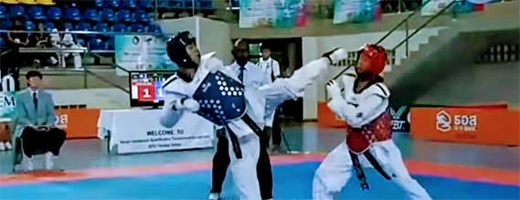 Taekwondo wtf, taekwondo wt, ata